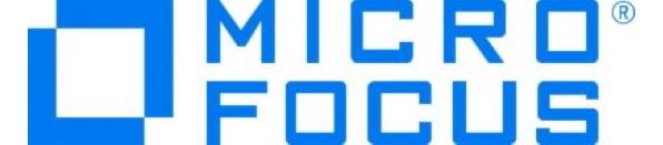 micro focus2